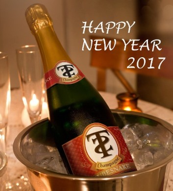Happy New Year 2017 (image by lenny)
