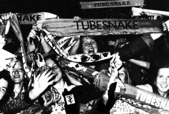 Tubesnakemania (image by lenny)